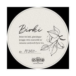 prufa-hringur-birki